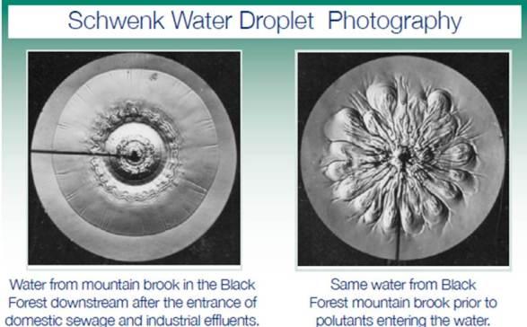 DropPhotography